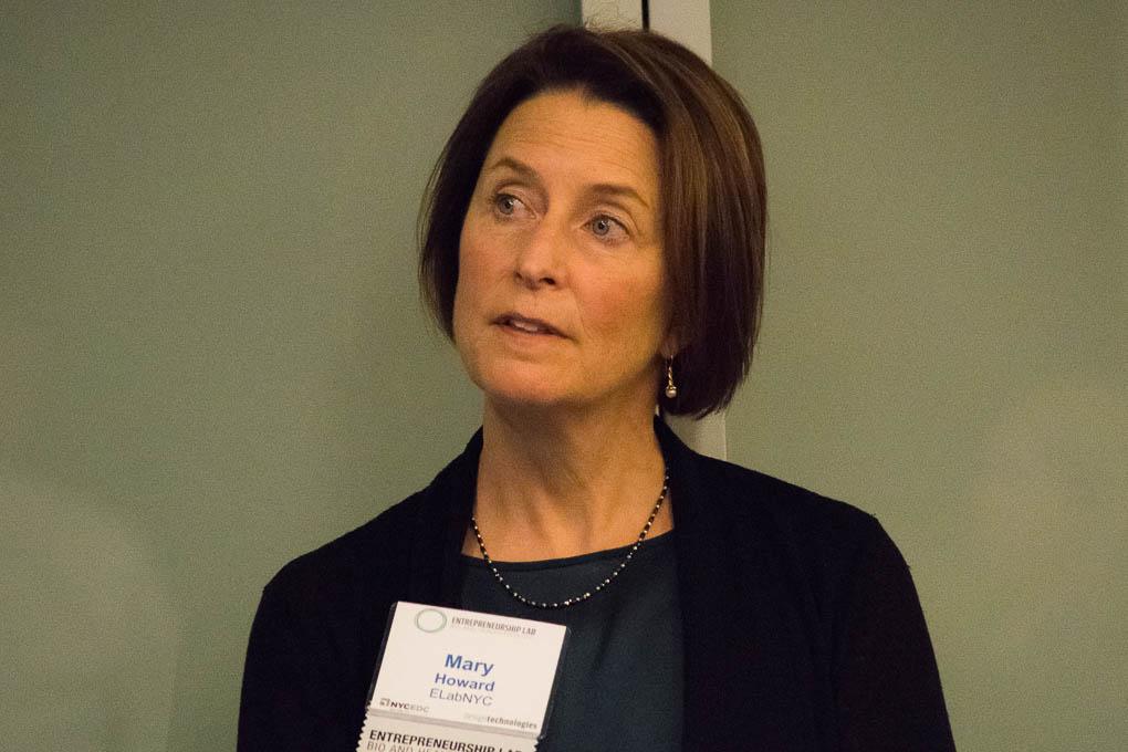 Mary Howard, ELabNYC
