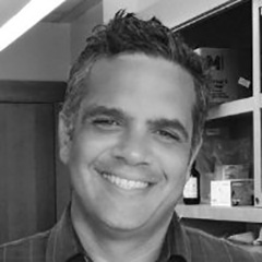 Greg Kornhaber