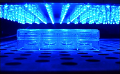 LED-picture