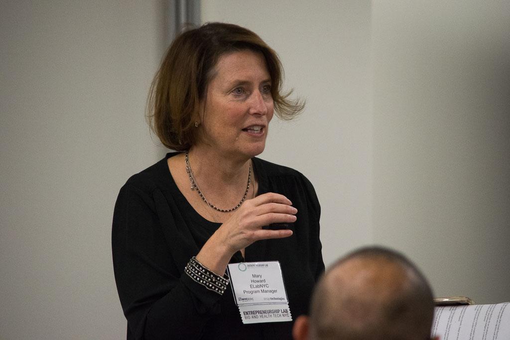 Mary Howard, ELabNYC Program Manager