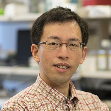 The Scott Lowe Lab, Cancer Biology & Genetics Program; Sloan Kettering Institute (SKI)
